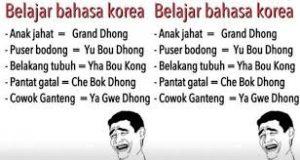 Meme jawa korea lucu