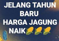 Meme Jomblo Tahun 2020 Archives Indonesia Meme