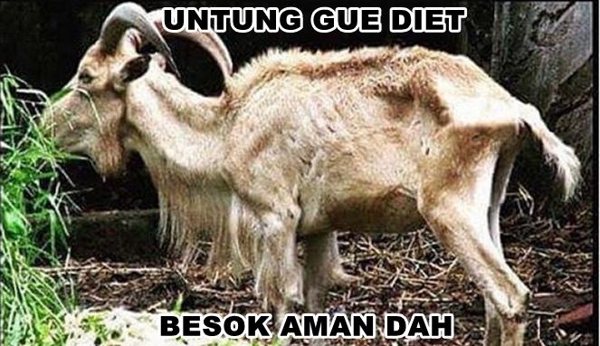 Kumpulan Meme Daging Kurban Lucu Idul Adha, 31 Juli 2020 1441 H oleh - blogcarolinaratri.xyz